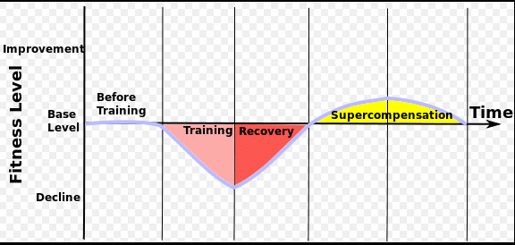 Adaption und Superkompensation im CrossFit Training