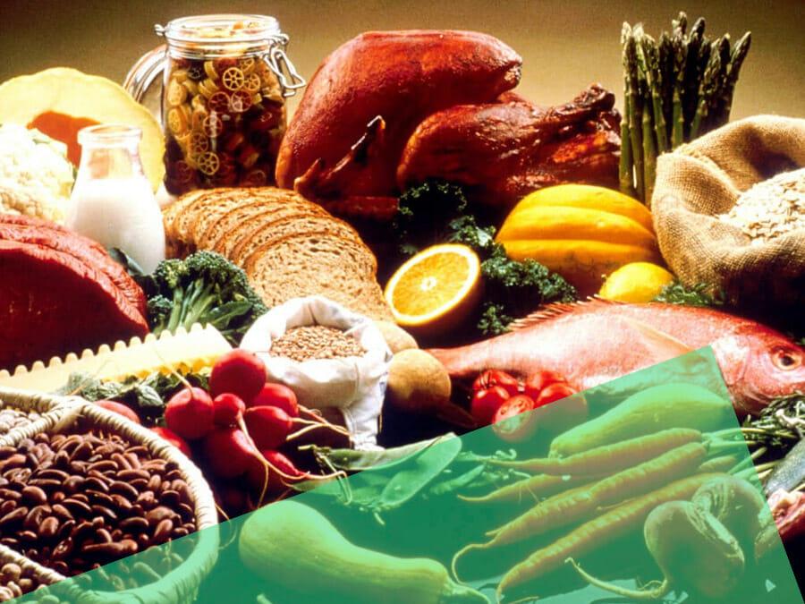 Makronährstoffe – Proteine, Kohlenhydrate, Fette