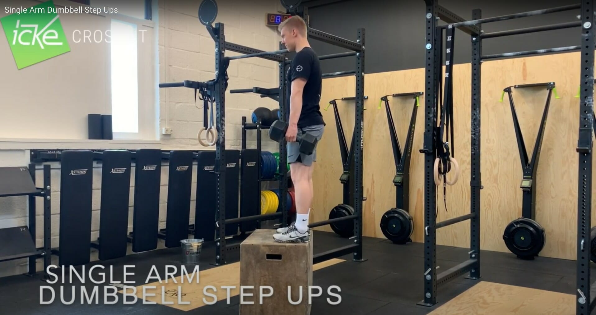 Single Arm Dumbbell Step-Up - Technikvideo