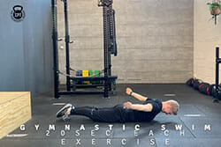 Icke Performance Trainingsprogramm Videos